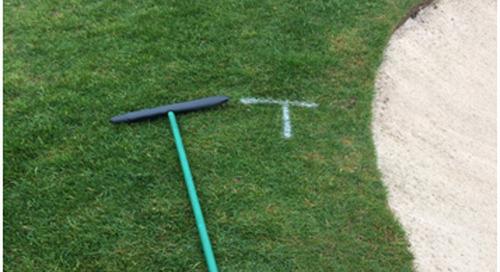 "Turf Blog ~ Bunker Rake Placement ~ ""T"" marks the spot."