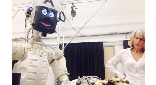 Human vs. Machine: Would you lie to a robot?