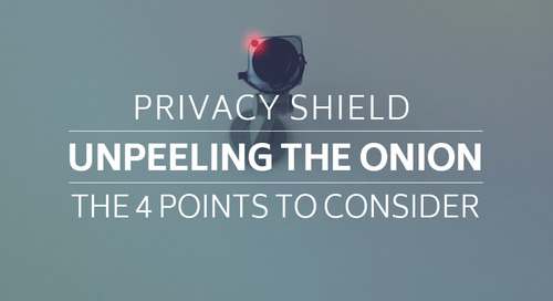 Privacy Shield: Un-peeling the Onion, The 4 Points to Consider