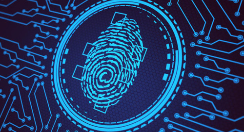 Identification-as-a-service: Fast-tracking biometrics