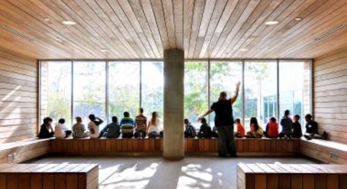 How post occupancy studies show what users really want from a building