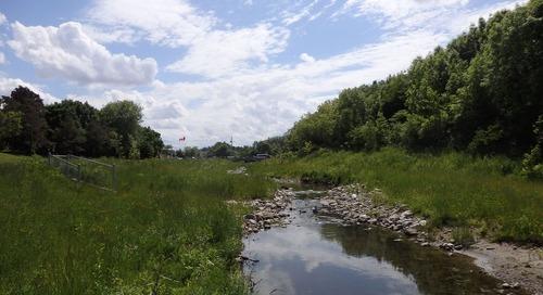 Creating a more natural stream in Filsinger Park