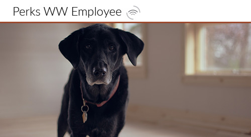 Bringing Your Dog to Work adds to Employee Engagement