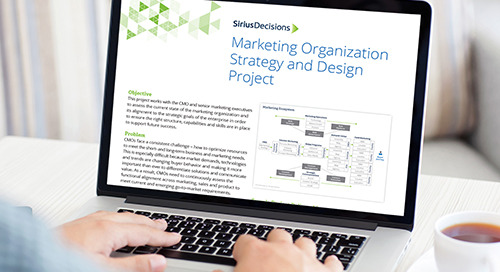 Marketing Organization Strategy and Design Project Overview