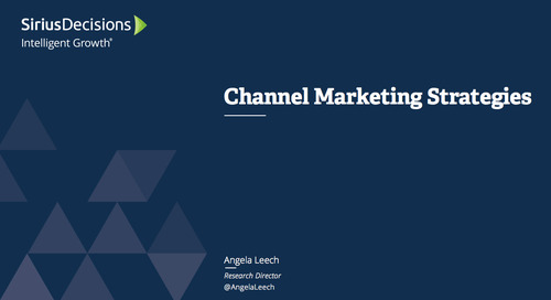 Channel Marketing Priorities