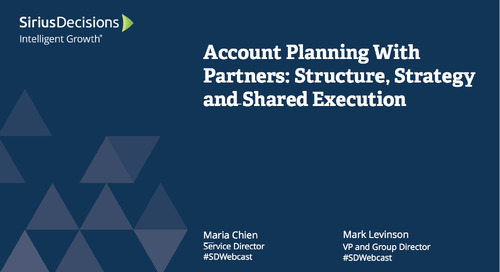 Account Planning with Partners: Structure, Strategy and Shared Execution Webcast Replay