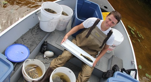 Master's student David Benoit takes GIS underwater to study aquatic ecology