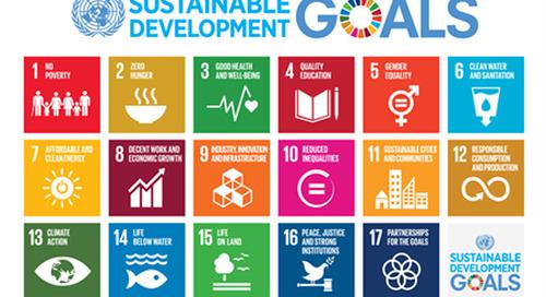 Webinar: UN Sustainable Development Goals: Understanding the Role of Philanthropy