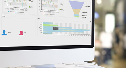 Retail Guest Analytics: Deeper Visibility Smarter Decisions