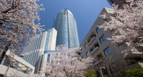 Compliance in Japan can be a cultural minefield