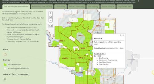 Application du mois d'octobre: Calendrier de rétablissement et de restauration des arbres de la Ville de Calgary