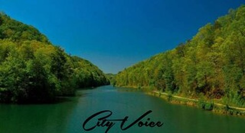 City Voice Vol. 2 Edition 8