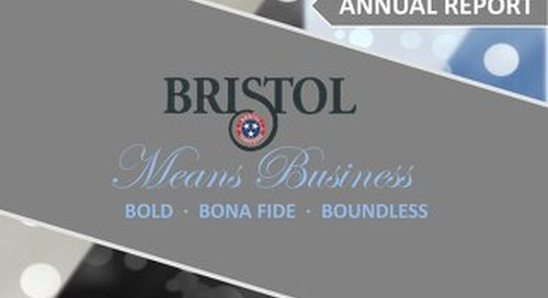 Bristol Means Business - 2015 Annual Report