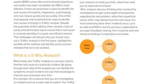 Environmental 5 Why Analysis