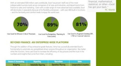 Vena, An Enterprise Excel Platform