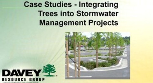 Case Studies - Integrating Trees into Stormwater Management April 2017