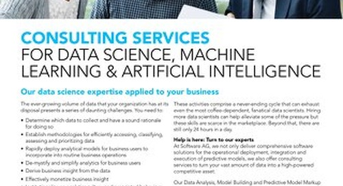 Zementis Consulting Services for Data Science, Machine Learning & Artificial Intelligence