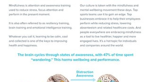 Quick Guide: What is Mindfulness Training?