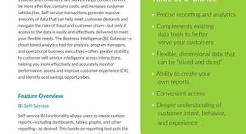 CS-Verint_BI-Gateway_Executive-Summary_083016