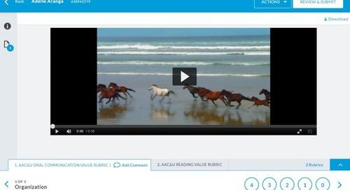 Video Support in Aqua!