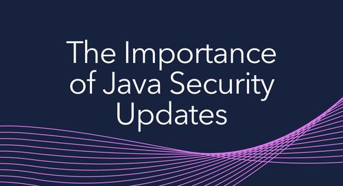 The Importance of Java Security Updates