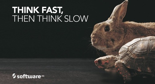 Think Fast, Then Slow: Duality Defines our World