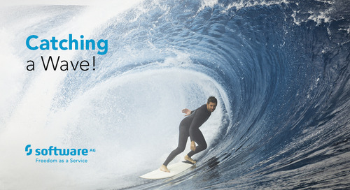Software AG: Surfing the California Waves at 50