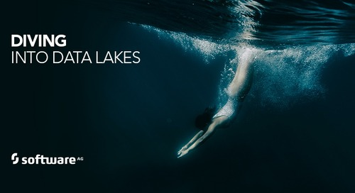 Data Lakes: Still Waters run Deep