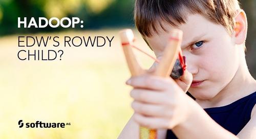 Is Hadoop EDW's Rowdy Child?