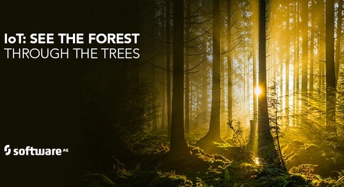 Find your Way through the IoT Forest