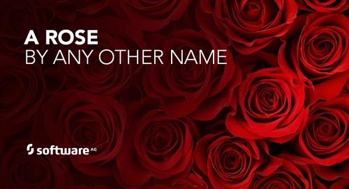 IT Portfolio Management: A Rose is a Rose