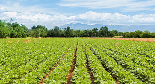 2019 Federal Budget: Gearing up for change in agriculture