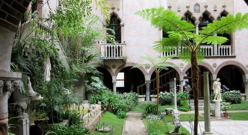 You can still view the Isabella Stewart Gardner Museum's iconic hanging nasturtiums