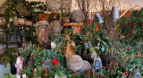 Looking for Last-Minute Christmas Decorations?
