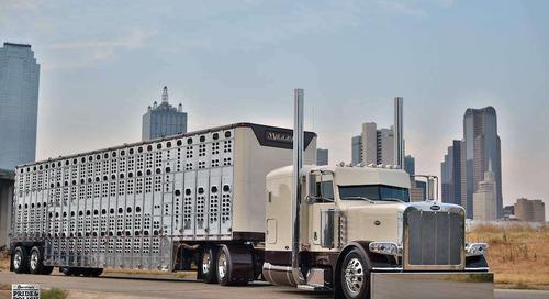 Congress clears bill exempting livestock haulers from ELD mandate through September; Trump may veto