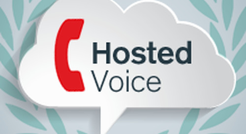 How to use Hosted Voice to get one up on your competition