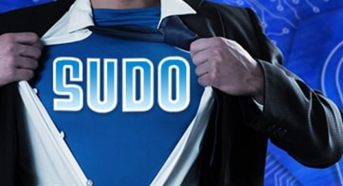 To Sudo or Not to Sudo? That is the Question