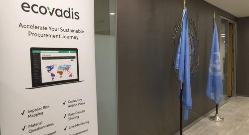 Illuminating the Way Toward Sustainable Supply Chains