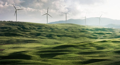 Beyond Procurement: Sustainability as a Way to Engage and Retain Talent