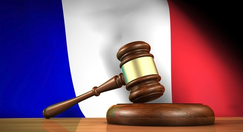 Duty of Care Law: French Constitutional Council gives the green light