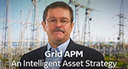 Grid APM - An Intelligent Asset Strategy