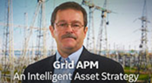 Grid APM - An Intelligent Asset Strategy