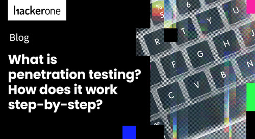 What is Penetration Testing? How Does It Work Step-by-Step?