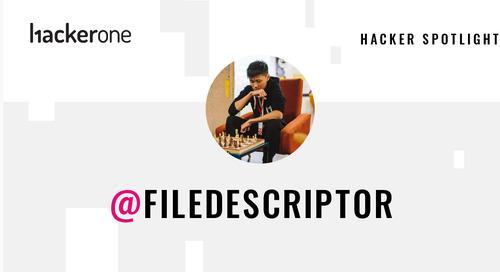 Hacker Spotlight: Interview with filedescriptor