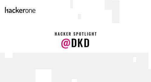 Hacker Spotlight: Interview with dkd
