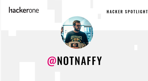 Hacker Spotlight: Interview with notnaffy