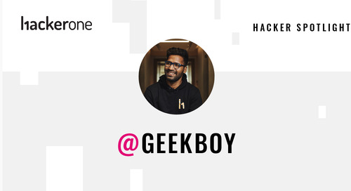 Hacker Spotlight: Interview with Geekboy