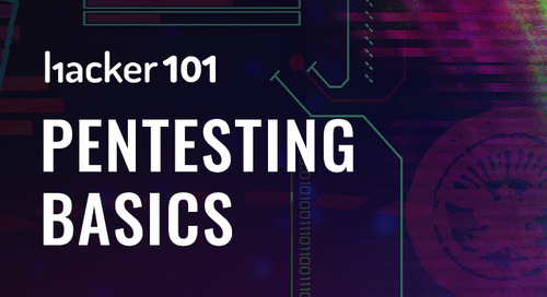 Pentesting basics video series launched on Hacker101