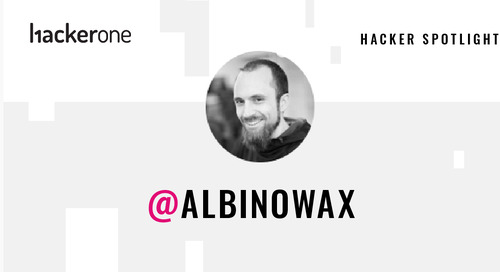 Hacker Spotlight: Interview with albinowax