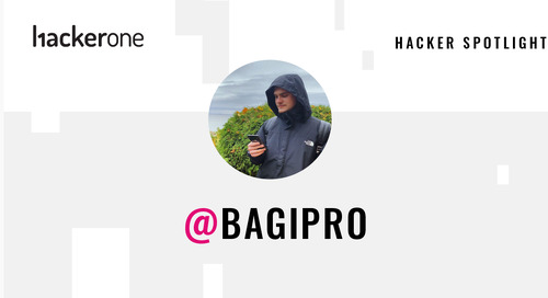 Hacker Spotlight: Interview with bagipro